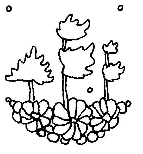 Cloudship Press